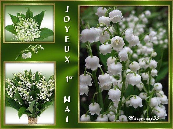 Joyeux 1er Mai à vous tous & toutes !!!
