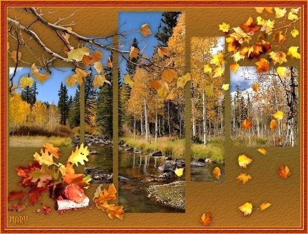Regard sur la rivière d'automne