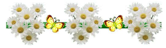 Résultat d'images pour gifs fleurs pâquerettes